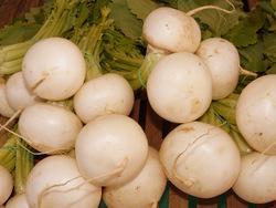 turnip 5743_64
